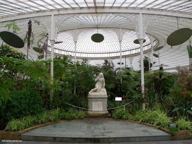 Glasgow Botanics Wina