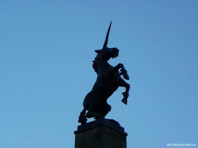 Unicorn Inverness Wina